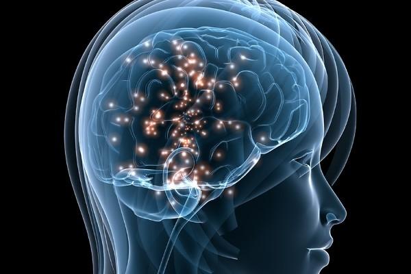 Alzheimer, scoperta la molecola che ringiovanisce il cervello