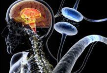 Parkinson, ultrasuoni nel cervello per fermare i tremori
