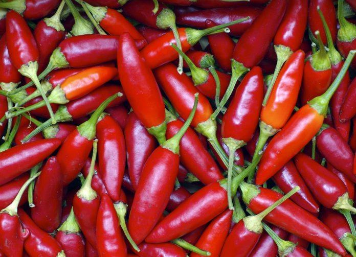 Peperoncino, mangiarlo 4 volte a settimana dimezza il rischio di infarto e ictus